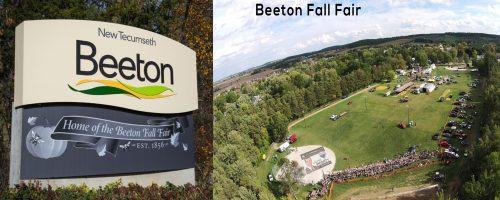 Beeton1